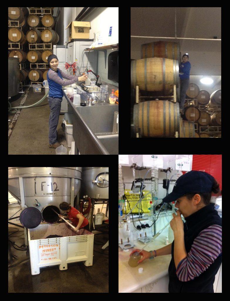 Coralie Houin Petit Chai La Grande Motte bieres artisanales spiritueux whisky rhum gin cognac